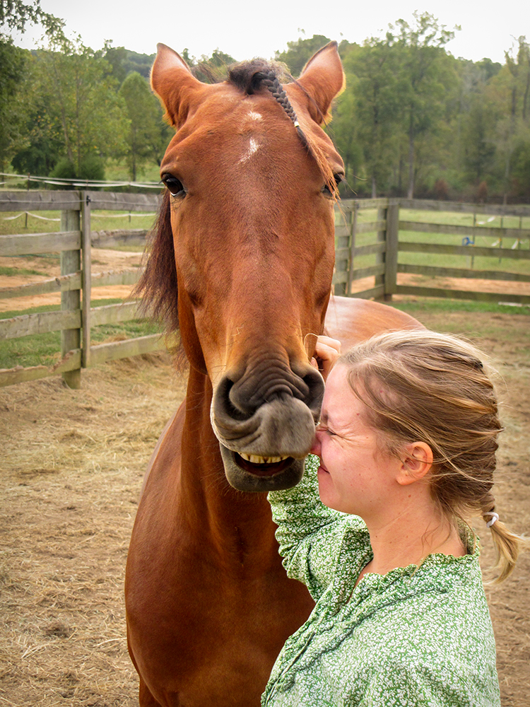 DEM Tarjo bay Lusitano gelding kissing nose of young rider