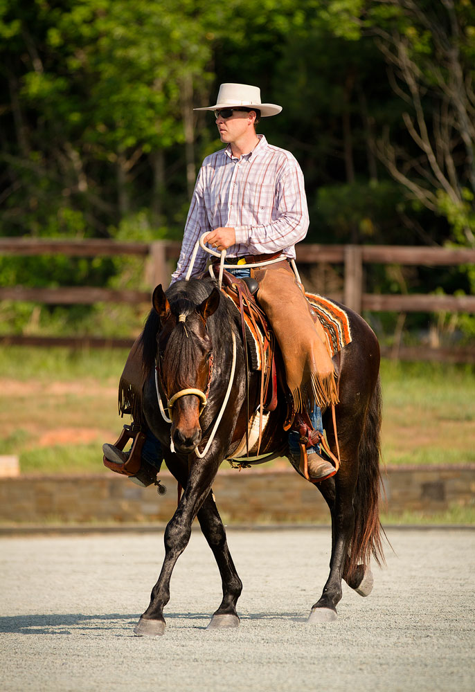 Richard Schouten training his dark bay lusitano stallion DEM Casta�o to do lateral work in the arena at Don E Mor lusitano horse farm