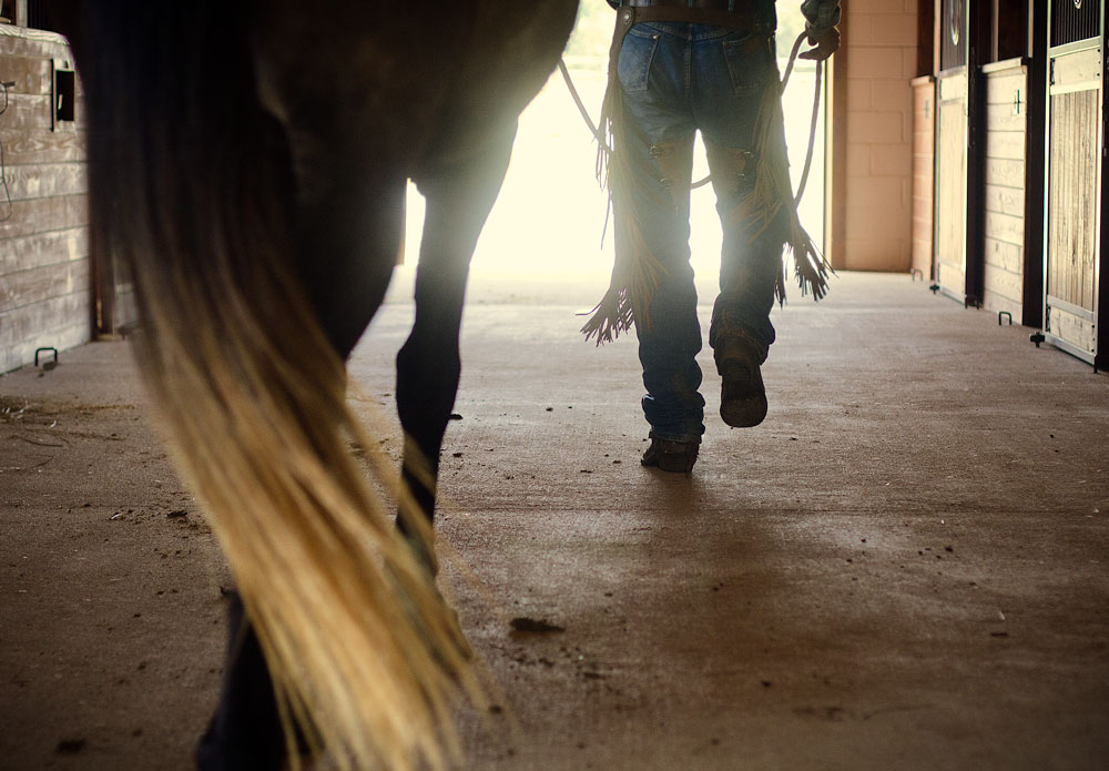 Trainer walking a horse out of the door tail and leather chaps swinging
